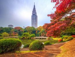Thưởng lãm những công viên đẹp nhất tại thành phố Tokyo